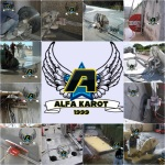 Alfa Karot